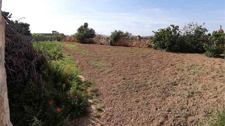 4 bedroom HOC with agricultural fields